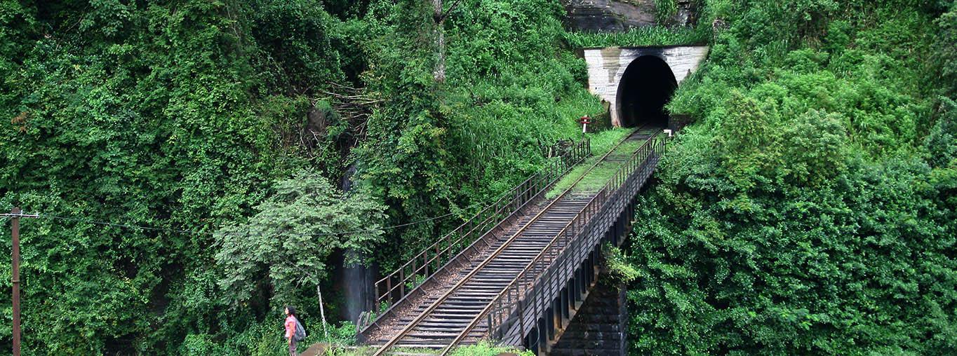 Sri Lanka Train Tourist Spot